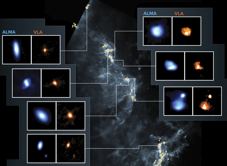 More than three hundred planet-forming disks around young stars found in the Orion Clouds